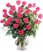 Hey Hottie! 2 Dozen Long Stem Premium HOT PINK Ecuadorian Roses
