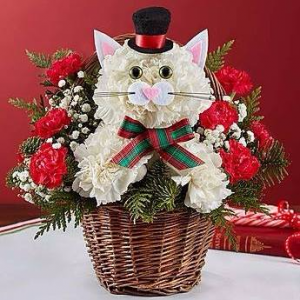 1-800-Flowers® Christmas Caroling Cat™  in Valley City, OH | HILL HAVEN FLORIST & GREENHOUSE