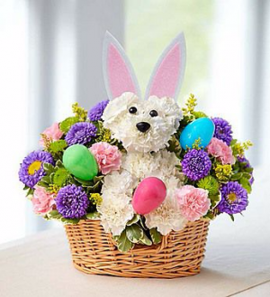 1-800-Flowers Hoppy Easter Bouquet  in Valley City, OH | HILL HAVEN FLORIST & GREENHOUSE