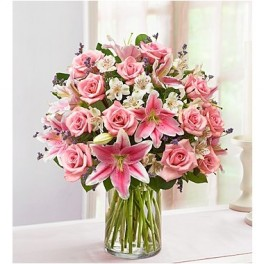 1-800-Flowers Pink Perfection™  in Valley City, OH | HILL HAVEN FLORIST & GREENHOUSE