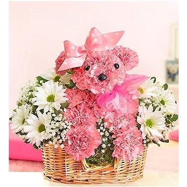 1-800-Flowers Princess Paws™