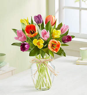 1-800-Flowers Timeless Tulips®  in Valley City, OH | HILL HAVEN FLORIST & GREENHOUSE