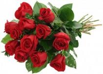 1 Doz Long Stem Red Roses 1 Doz Roses