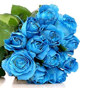 1 Dozen Blue Roses with baby breath in vase **PRE-ORDER 3- 5 DAYS ADVANCE** in Vancouver, BC | ARIA FLORIST