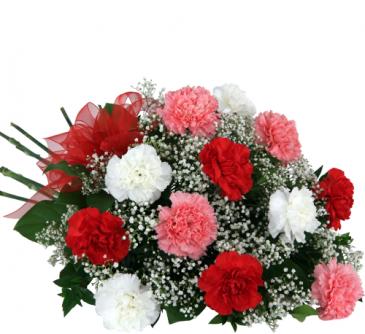 1 dozen carnations wrapped