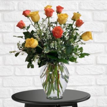 1 Dozen Citrus Roses