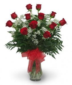 1 Dozen Long Stem Premium Roses