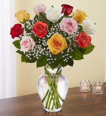 1 Dozen Multicolor Roses Vase Arrangement