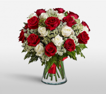 1 or 2 Dozen Red and White Roses