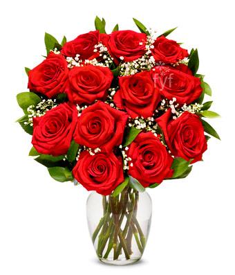 1 Dozen Red Roses Most Popular!