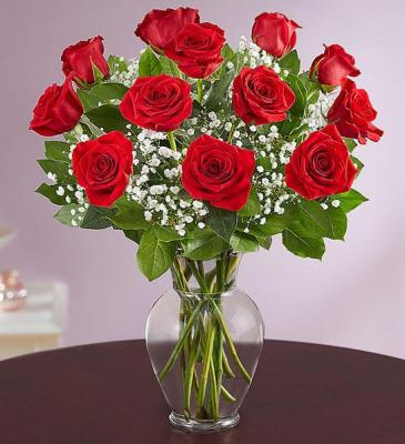 1 Dozen Red Roses Arranged with Babies Breath