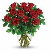 1 Dozen Red Roses Arrangement