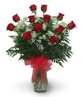 1 Dozen Red Roses  Beautiful Vase of Long Stem Roses