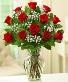 1 DOZEN RED ROSES ROSES