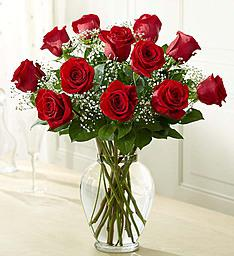 The Classic  One dozen red roses in a Vase