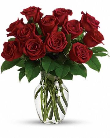 1 Dozen Red Roses Vased Red Roses