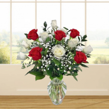 1 Dozen Red & White Roses