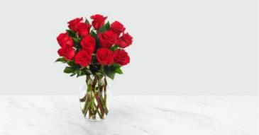 1 DZ RED ROSES RED ROSES