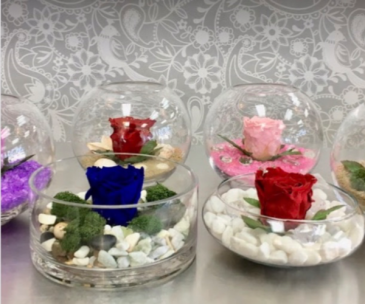 1 Eternal Rose in Vase with decoration  Red - Blue- Pink  To choose from