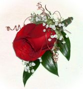1 Red Rose Boutonniere
