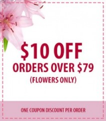 $10.00 OFF Orders over $79  ORDER your Valentine's Day Flowers NOW!!! Offer Ends Saturday February 11, 2017. CALL 203-377-7101