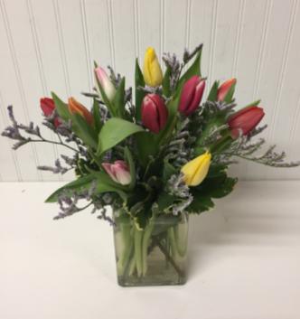 10 Assorted Tulips