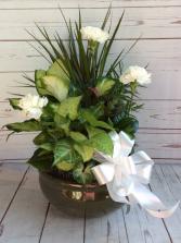 """10"""" Ceramic Dish Gardern W/ Bow & Flowers"""