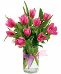 10 Pink Tulips arranged in a vase!