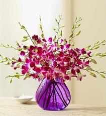 10 Stem Orchid - Purple Vase Arrangement