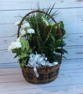 """10"""" Wicker Dish Garden W/Flowers"""