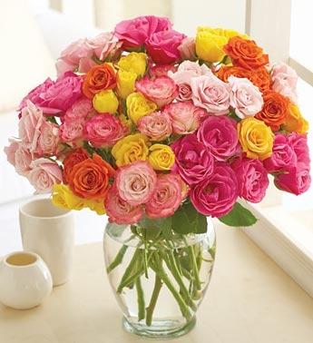 100 Blooms Petite Summer Roses