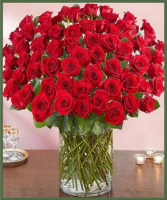 100 Premium Roses Any Color