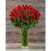 100 Premium Roses Vase Arrangement