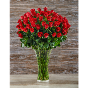 100 Premium Roses Vase Arrangement in Sunrise, FL | FLORIST24HRS.COM