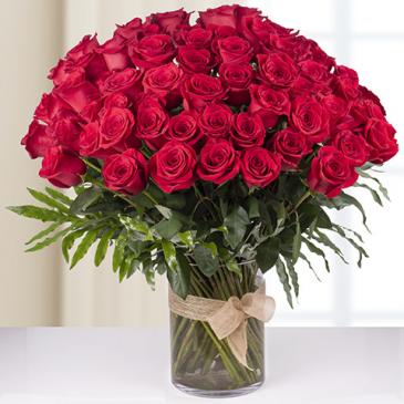 100 Red Natural Roses