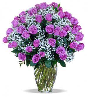 100 Rose Arrangement Roses in Tulsa, OK | THE WILD ORCHID FLORIST