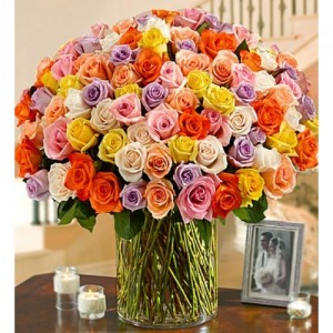 100 ROSES PICK YOUR COLOR