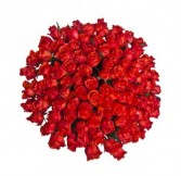 100 RED ROSES Bouquet Wrapped