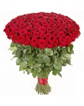 100cm Super Long Stem Dozen Roses