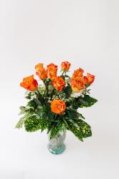 Free Spirit Garden Roses  30