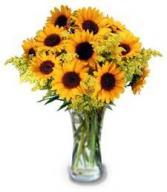 Smiles & Sunflowers
