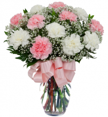 12 Carnations Arranged * You Choose Colors