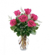1/2 dozen hot pink Fresh hot pink roses