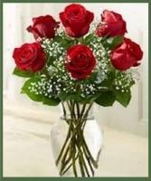 1/2 Dozen Long Stem Roses Your Choice of Color