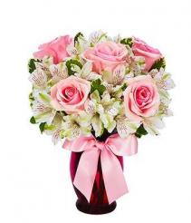 1/2 Dozen Pink Rose Mix