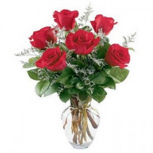1/2 Dozen Roses in Vase Vase in Union, MO | Sisterchicks Flowers and More LLC