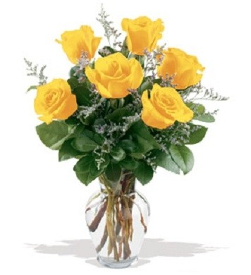 1/2 Dozen Yellow Roses