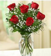 1/2 DZ RED ROSES  1/2 DZ CLASSIC RED ROSES