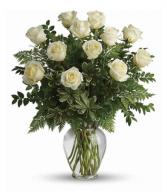 12 Elegant White Roses
