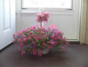 """Hanging Baskets!! 12"""" Hanging Baskets grown here at Malaga Greenhouse!  One decorated for $37.00.  Make it a pair for $57.00.  Solids or colors. in Jerusalem, OH 